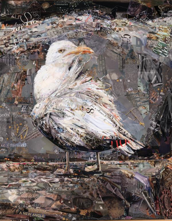 Windswept by Gina Torkos