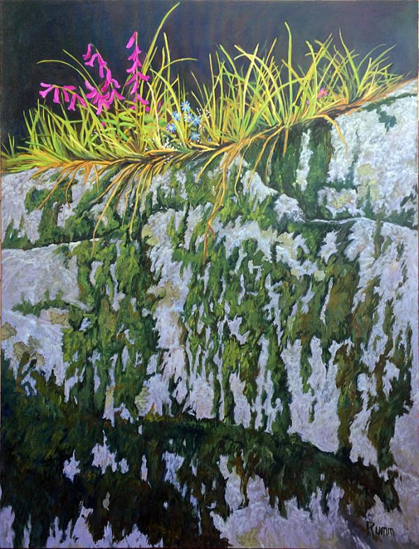 Granite Garden