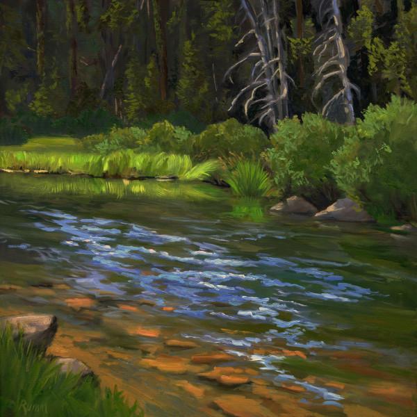 Quiet Passage, Truckee River