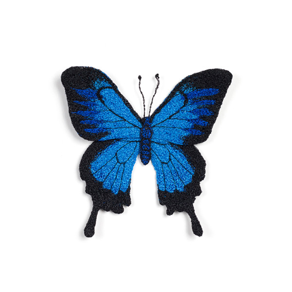 #55 Ulysses Butterfly by Meredith Woolnough