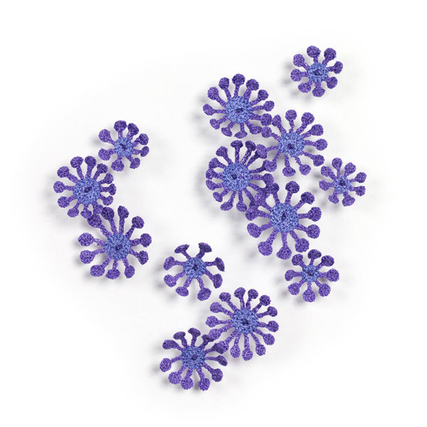 #57 Cherry Blossom Alveopora by Meredith Woolnough
