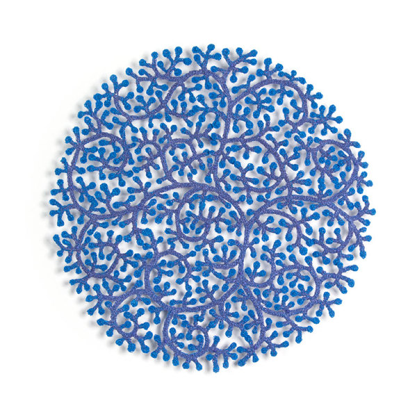 Coral Polyps by Meredith Woolnough