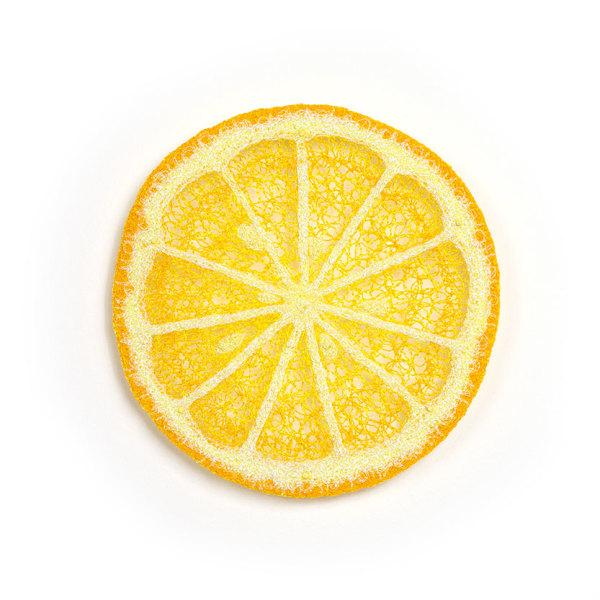 #27 Lemon by Meredith Woolnough