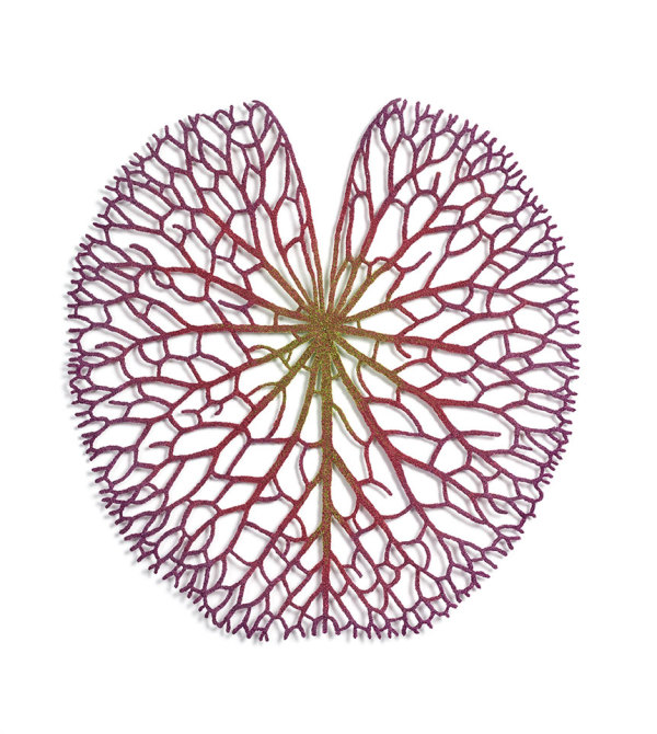 Lily Pad by Meredith Woolnough
