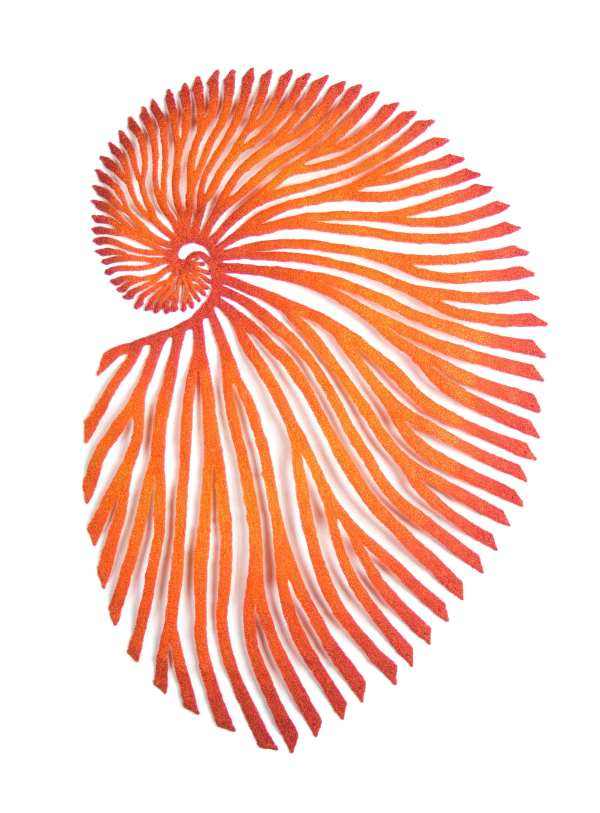 Paper Nautilus - red by Meredith Woolnough