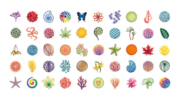 The Next 50 - limited edition art print by Meredith Woolnough