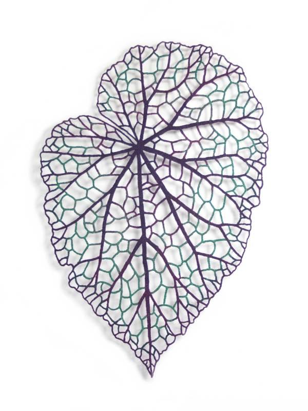 Begonia Leaf (Begonia rex) by Meredith Woolnough