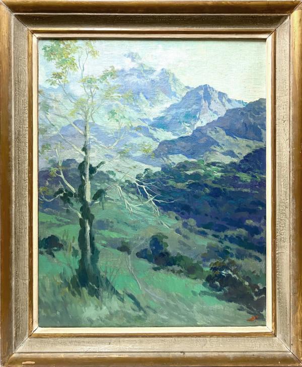 0088 - Mexican, Landscape