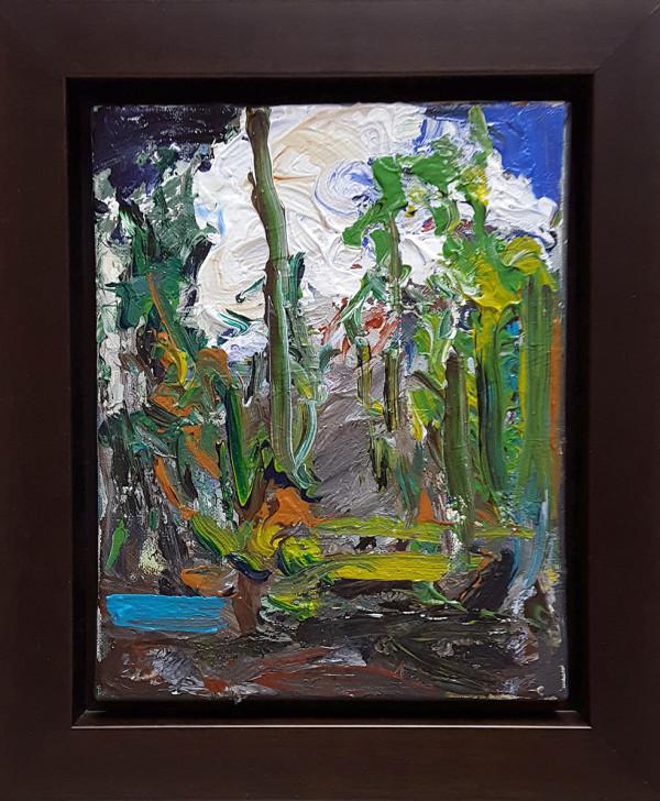 0434 - Forest Interior by Matt Petley-Jones
