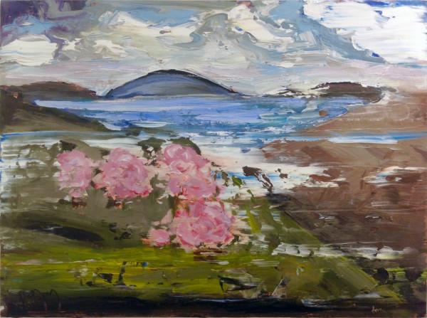 0551 - Spring Vista by Matt Petley-Jones