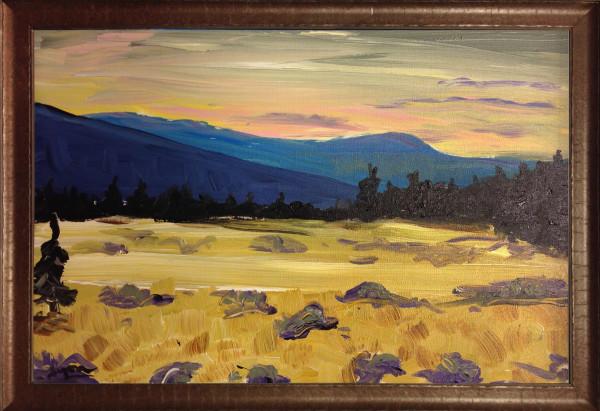 0859 - Montana II by Matt Lyon