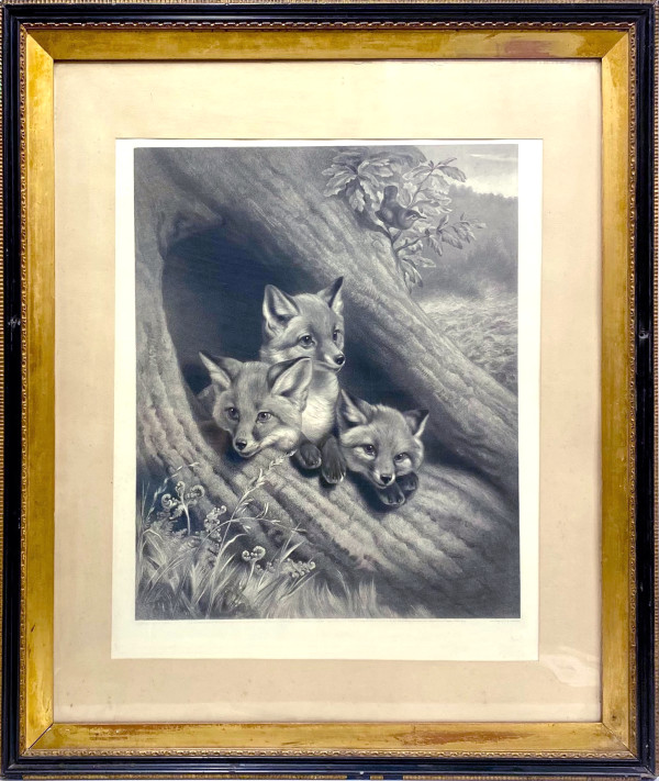 2718 - Three Fox Pups In a Burrow by William Henry Simmons ( 1811 -1882)