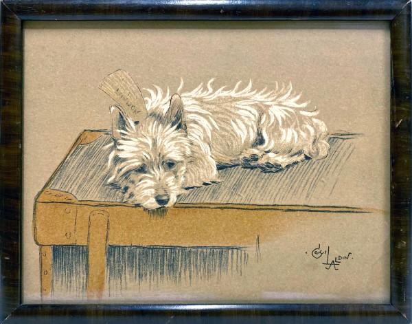 2789 - Dog by Cecil ALDIN