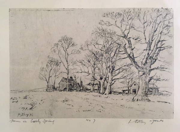 2901 - Farm in Early Spring No 7