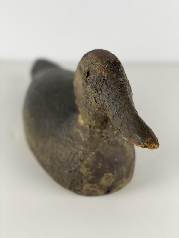 5063 - Duck Decoy