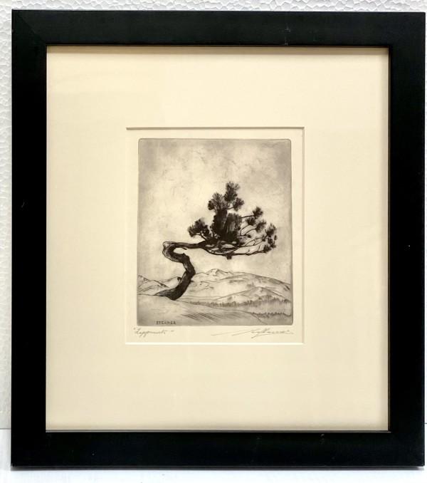 2934 - Lappmark by Malte Sterner, KFS (1903-1952)