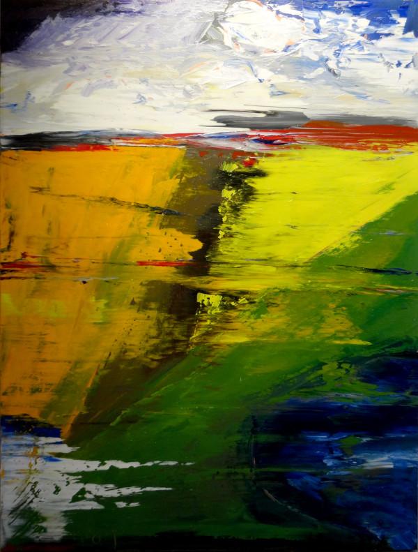 0268 - Angular Fields by Matt Petley-Jones