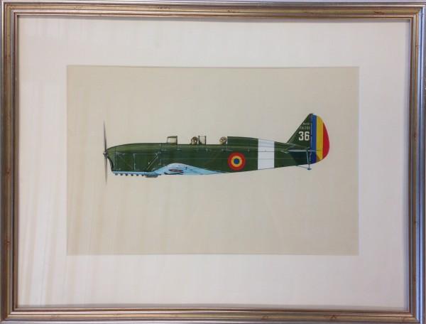 2528 - War plane: Nardi F.N. 305 36