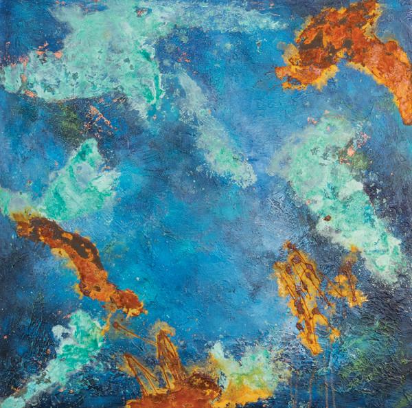 1150 - Galapagos by Barbara Arnold