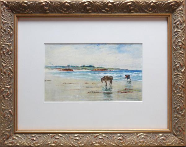 2937 - Gathering Sea Wreck, Connemara Coast by J Henderson