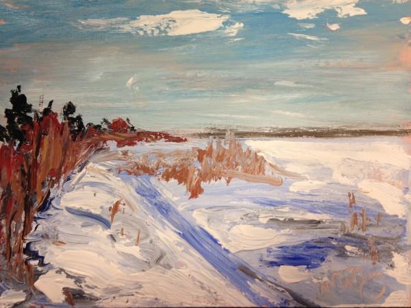 1223 - Edge of Lake, Winter - Cooking Lake by Matt Petley-Jones