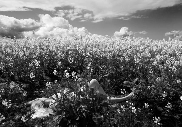 2452 - Sweet Summer Slumber by Linda Vermeulen