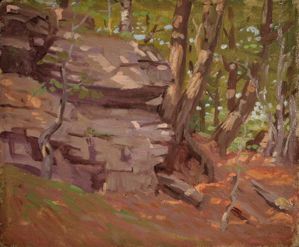0749 - Untitled, Forest with rocks by Norwood Hodge MacGilvary (1874-1949)