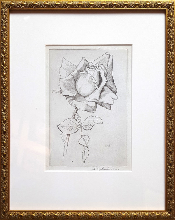2414 - Rose by H.M. Pemberton (1871-1957)