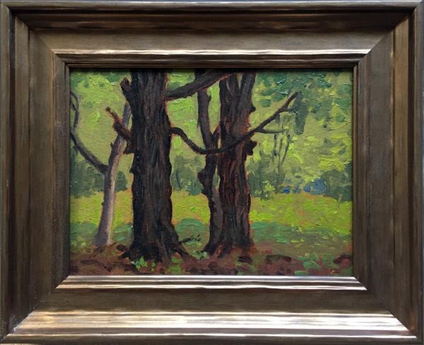 0177 - Woodland Landscape