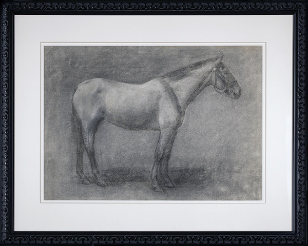 2039 - Drawing of Horse by Kate Smith Hoole