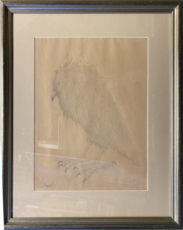 2914 - Raven 1 by Duncan Regehr