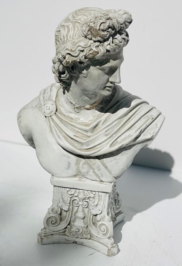 4197 - Roman Female Bust