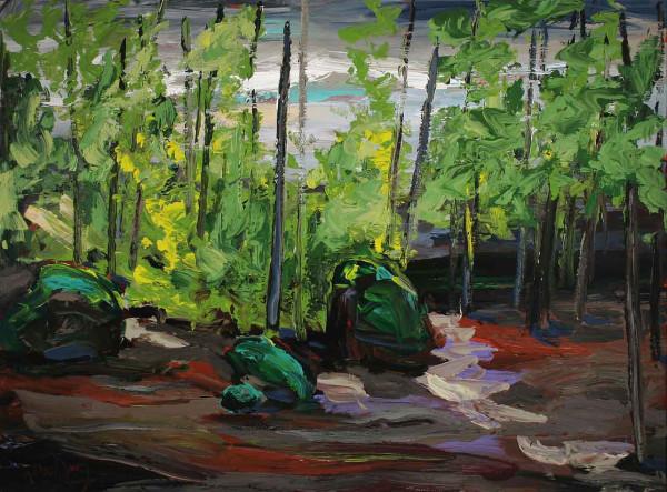 0559 - The Clearing by Matt Petley-Jones