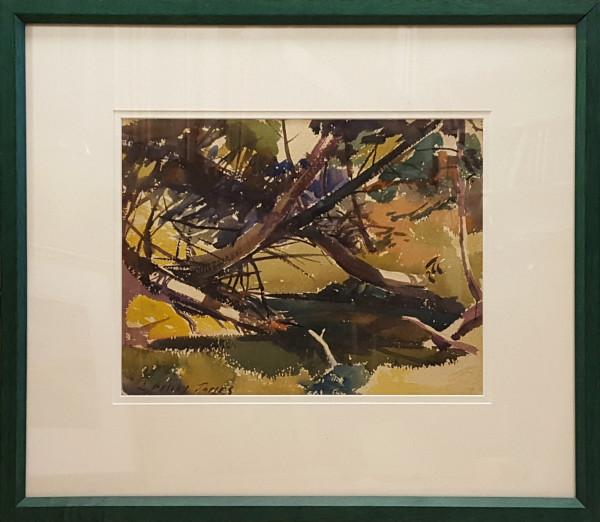 2366 - Tree Branches by Llewellyn Petley-Jones (1908-1986)