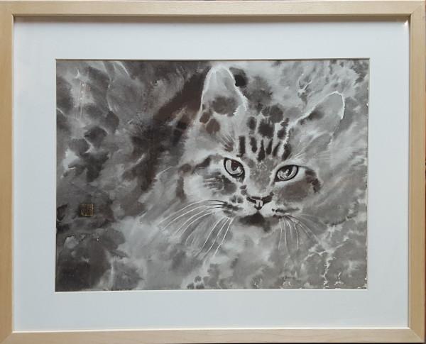 2729 - Grey Cat by Alex Zhihao Wang
