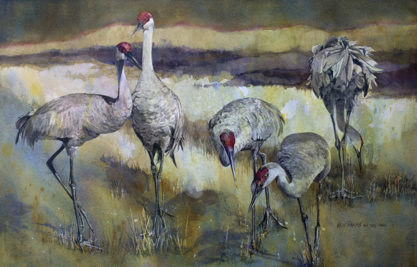Hunt and  Peck by Kris Parins