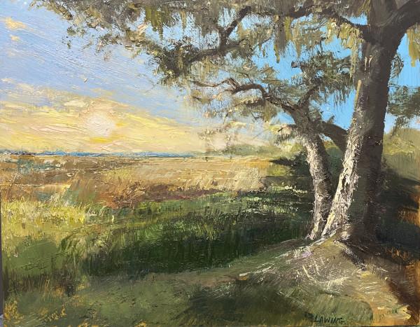 Marsh Light by Julia Chandler Lawing