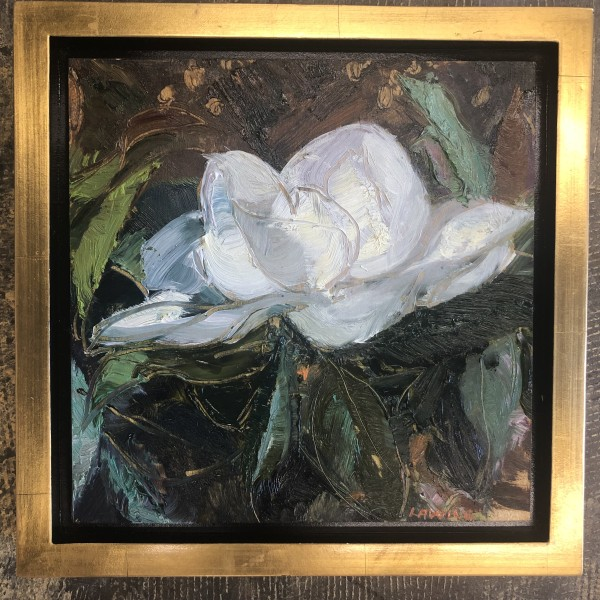 Magnolia by Julia Chandler Lawing