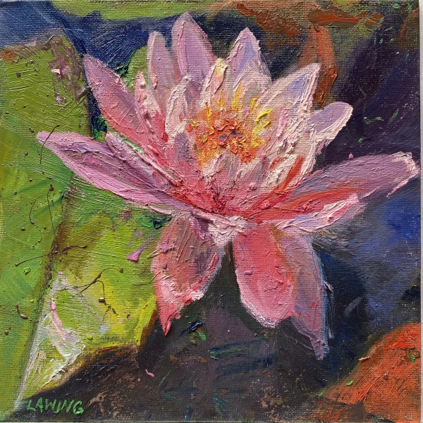 Pink Water Lilly by Julia Chandler Lawing