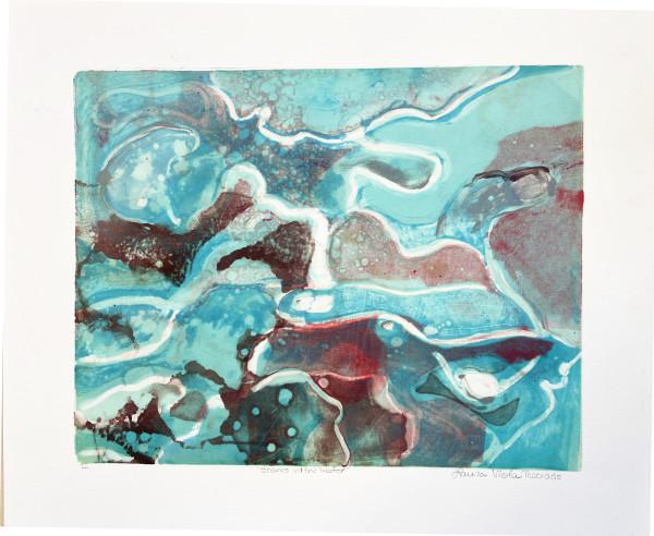 Sharks in the Water by Laura Viola Preciado