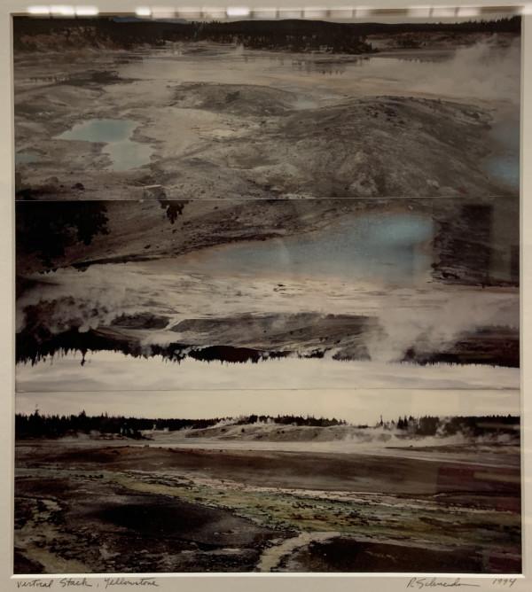 Vertical Stack, Yellowstone by Rosalind Schneider