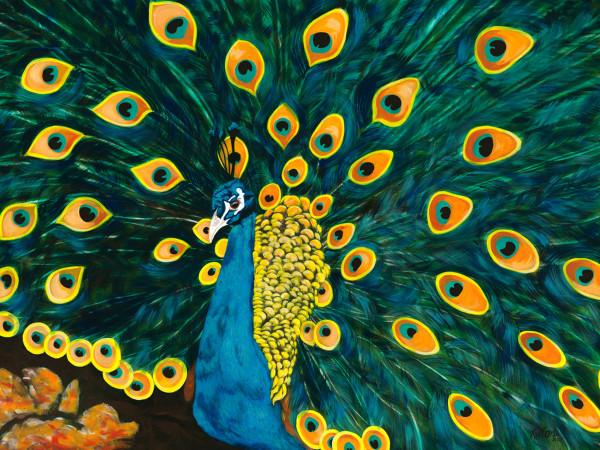 a) Peacock Sam by Kathleen Katon Tonnesen