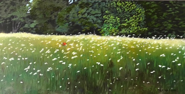 Daisy Field with Red Ball by John Attanasio