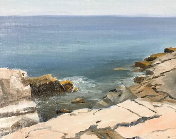 Schoodic Precipice by John Attanasio