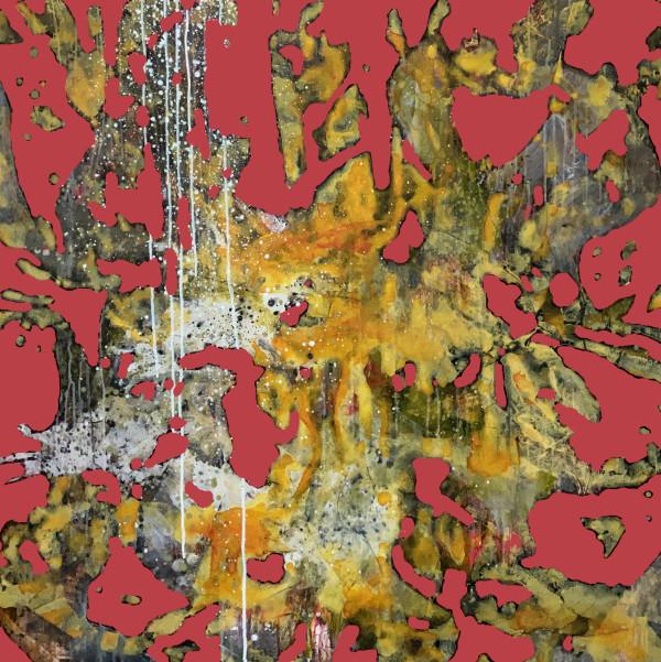 Transfiguration #2 by Sergio Gomez