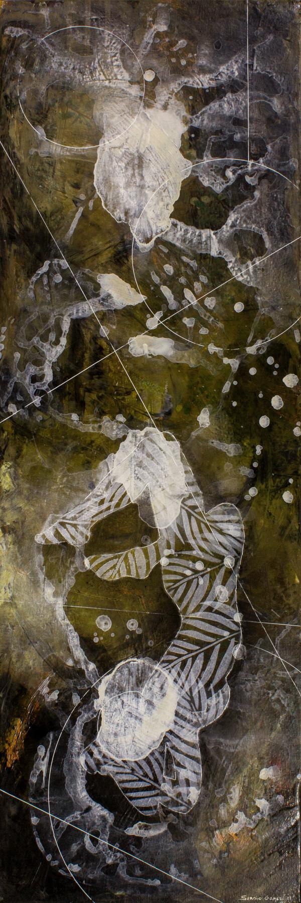 Diaphanous Bodies #4 by Sergio Gomez