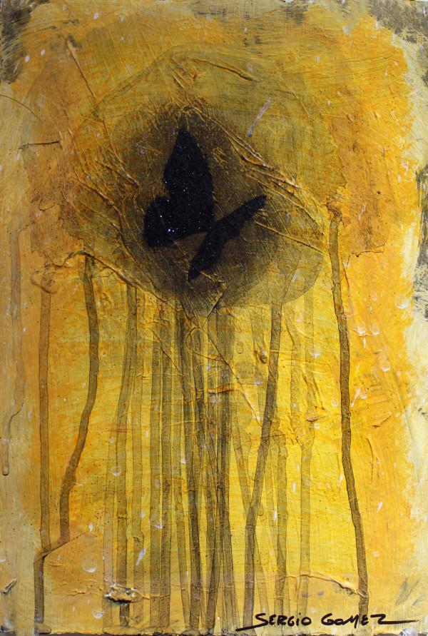 Transitional Habitat #12 by Sergio Gomez