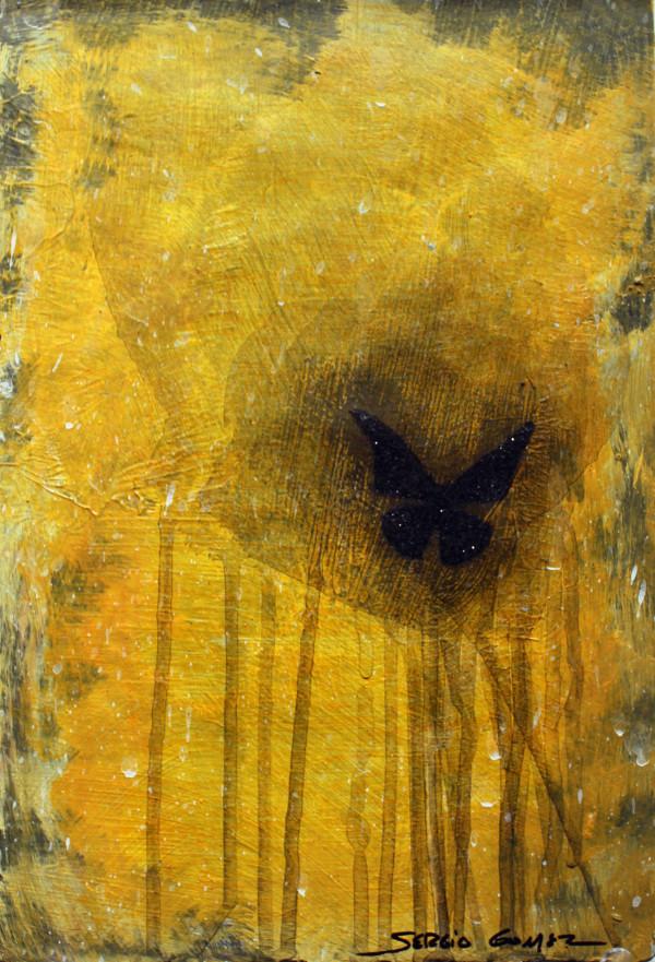 Transitional Habitat #3 by Sergio Gomez