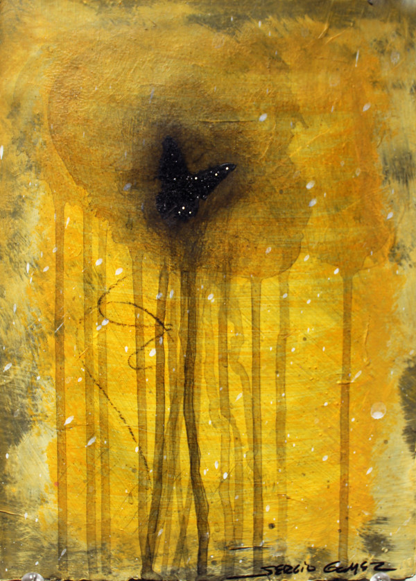 Transitional Habitat #7 by Sergio Gomez