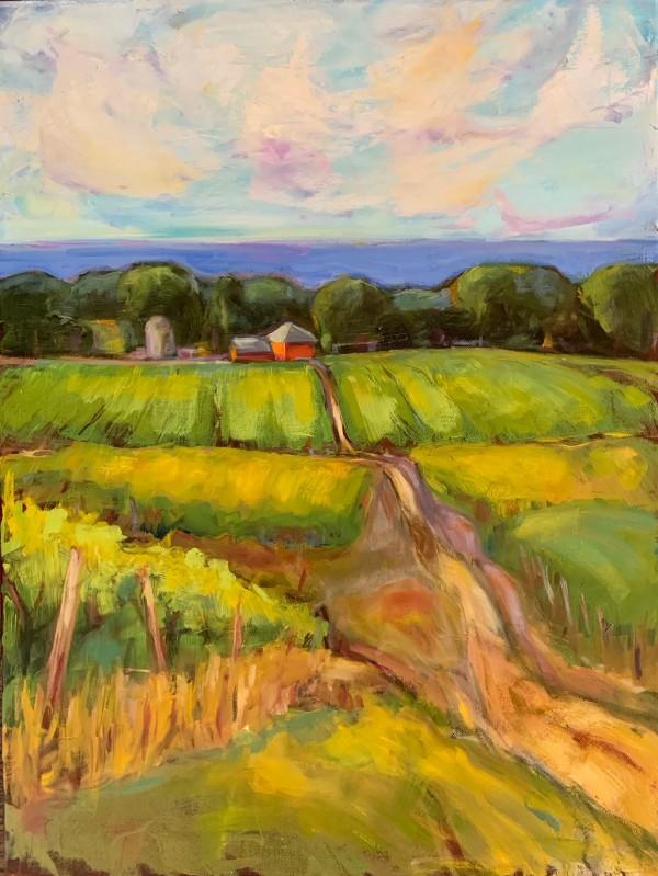 Vineyard Vista by Sally Hootnick